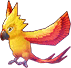Whimpering Fire Bird Image